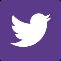 Twitter-theme-purple